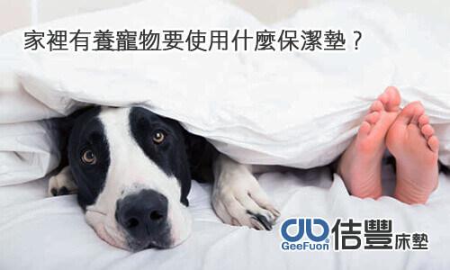 家裡有養寵物要用什麼保潔墊?
